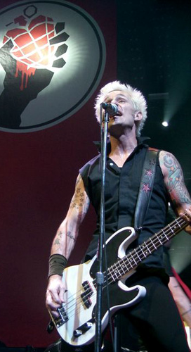 Green Day Bassist Mike Dirnt